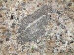 Small (35 mm) xenolith in Boundary Hill granite.